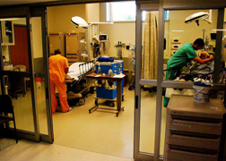 wh_Emergency-Department_img_3.jpg